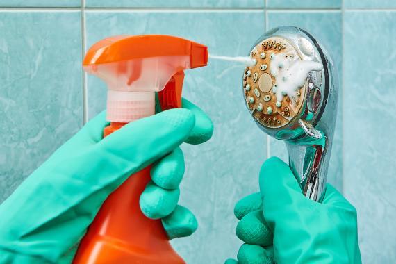 Limpiar la alcachofa de la ducha.