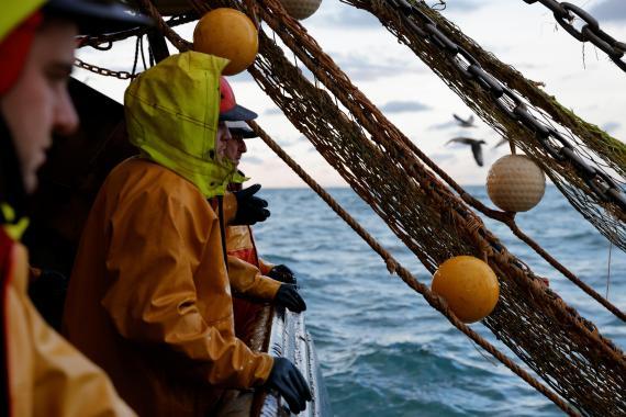 Pescadores en el Mar del Norte temen la resolución de la Unión Europea y Reino Unido respecto a la pesca, tras el Brexit.