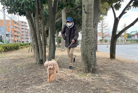 Shoji Morimoto paseando un perro