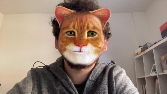 Filtro del gato de Zoom