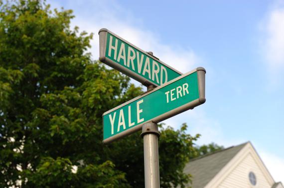 Harvard y Yale