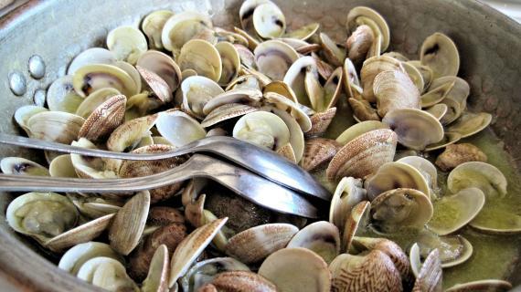 Las almejas son uno de los alimentos con vitamina B12 (Pixabay)