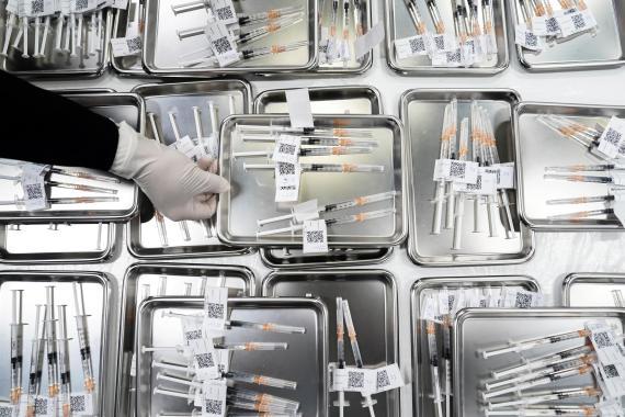 Bandejas con dosis preparadas de las vacunas desarrolladas contra el COVID-19.