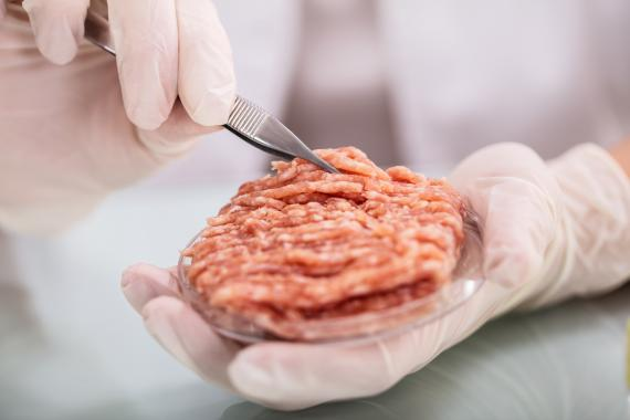Carne cultivada