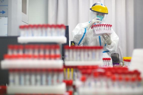 Un laboratorio realiza cientos de pruebas PCR en un cribado masivo para detectar positivos en COVID-19