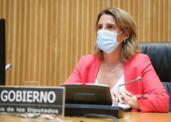 La ministra de Transición Ecológica y Reto Demográfico, Teresa Ribera. Congreso de los Diputados