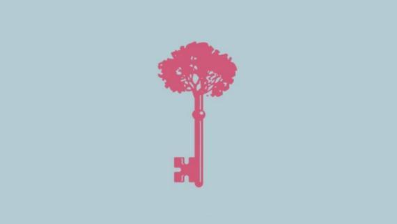 Árbol llave
