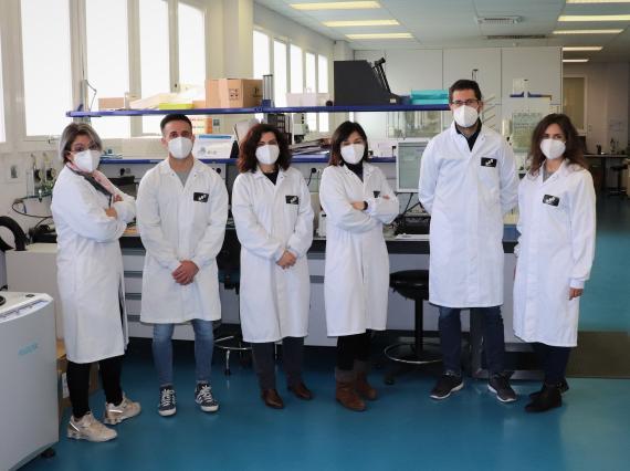 grupo de investigadores ITAINNOVA