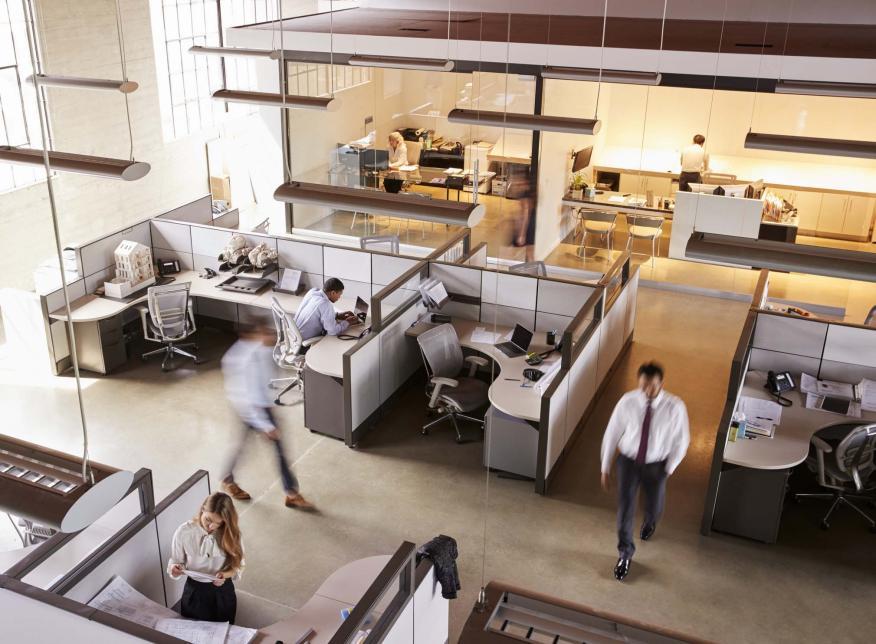 oficinas y cubículos en una empresa