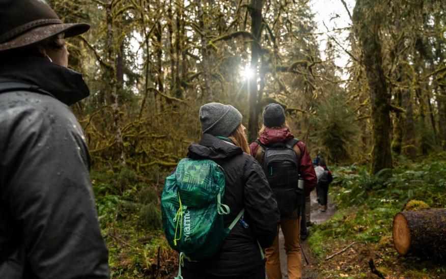 Excursión por el bosque