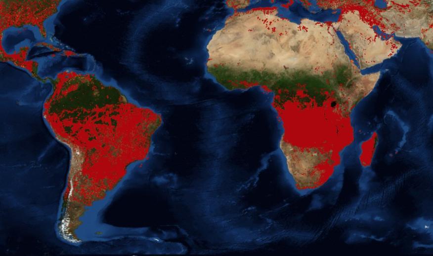 Incendios activos en el mundo según datos del satélite MODIS de la NASA