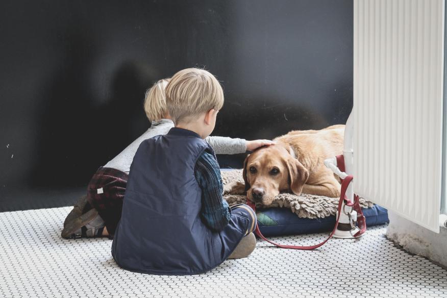 niños con perro, mascota