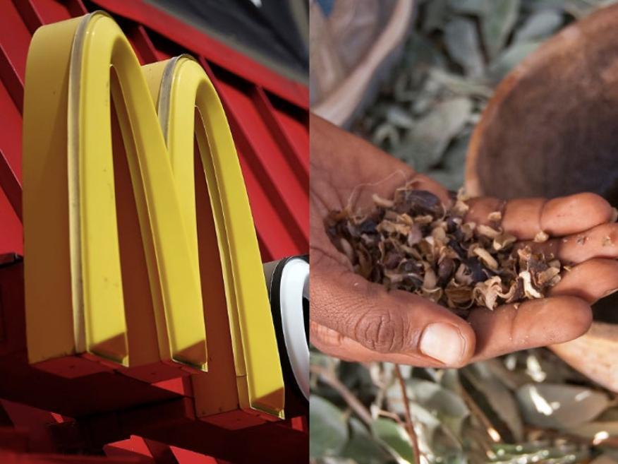 "McDonald's se ha comprometido a donar una ""porción significativa"" de su paja a Ford, según CNBC."