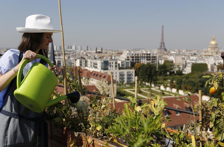 Charlotte Arnoux, en la azotea de 700 metros cuadrados  de Bon Marche, donde se ubica su huerto urbano con vistas a la capital en París, Francia, 26 de agosto de 2016.