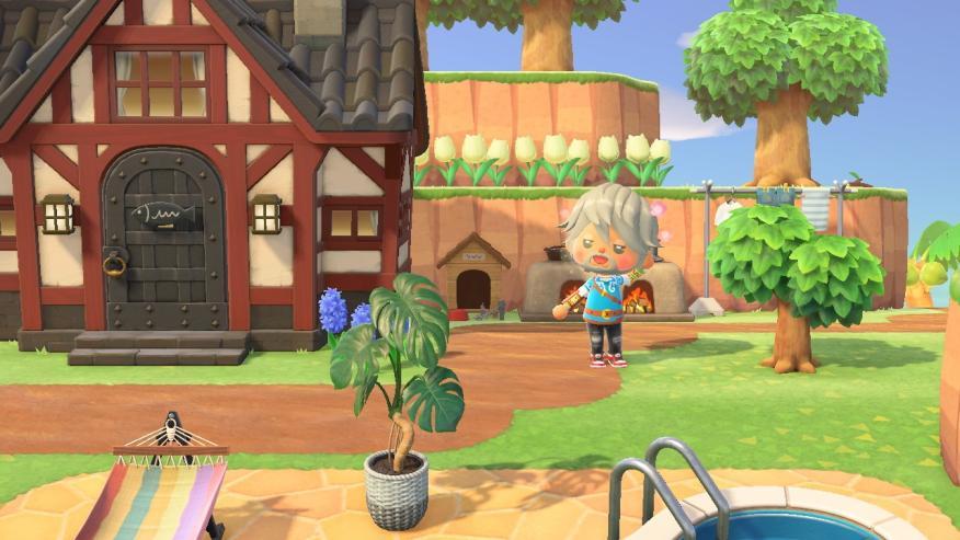 Animal Crossing Hew Horizons