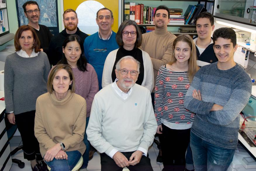 El equipo de Isabel Sola, Luis Enjuanes y Sonia Zúñiga que investiga la vacuna contra el coronavirus en el CSIC.