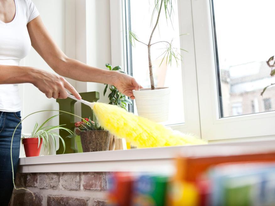 ¿Es buena idea limpiar tu casa con un plumero?