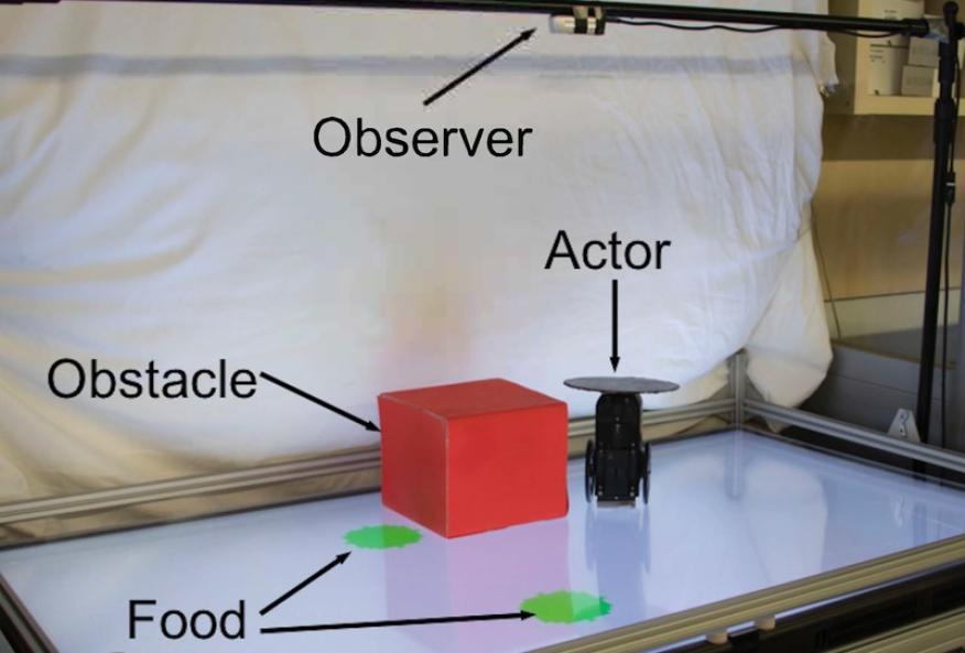 Imagen del experimento con los dos robots